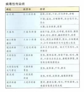 边牧常见病毒性、真菌性传染病症状!
