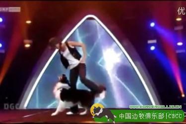 视频: 奥地利才艺秀上边牧Esprit与主人共舞令人惊叹