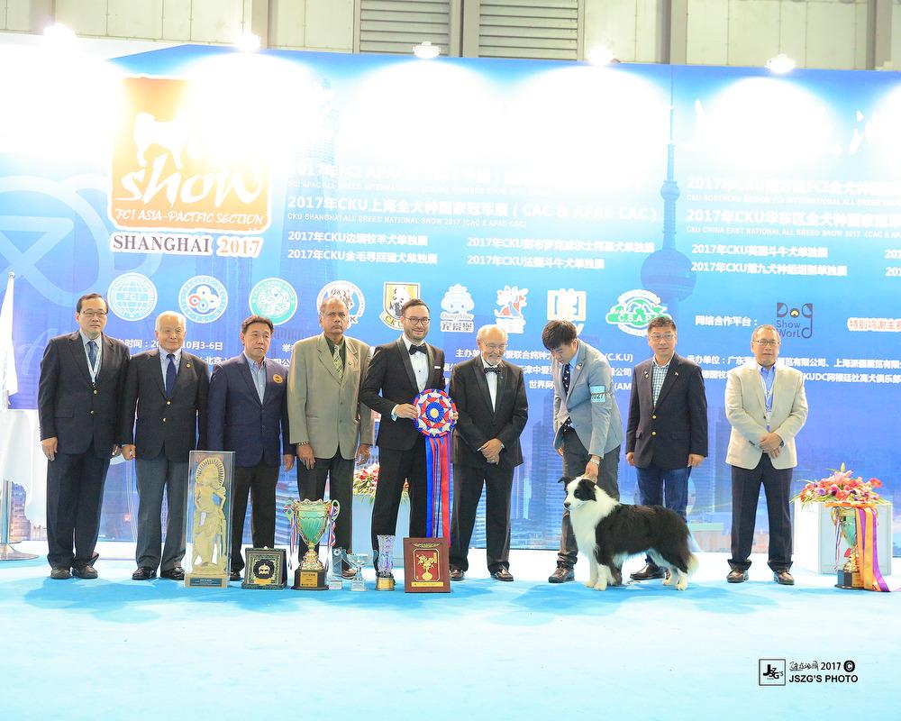 [边牧排行榜]2017年中国CKU边境牧羊犬国家排行榜TOP10